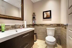 Local à louer Piedmont - toilette